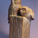 p6_Sawwhet Owls Pair
