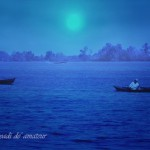 Song of nature and life in his blue-covered moonlight night, Barito river, South of Borneo, Indonesia
