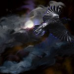 Black Crow Turbulance